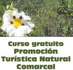 Curso promoción turística comarcal